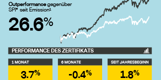 Infografik – Vontobel Swiss Research Basket Juli 2018