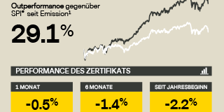 Infografik – Vontobel Swiss Research Basket Mai 2018
